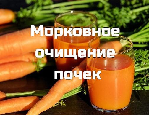 Существует несколько методик очищения почек с помощью моркови при