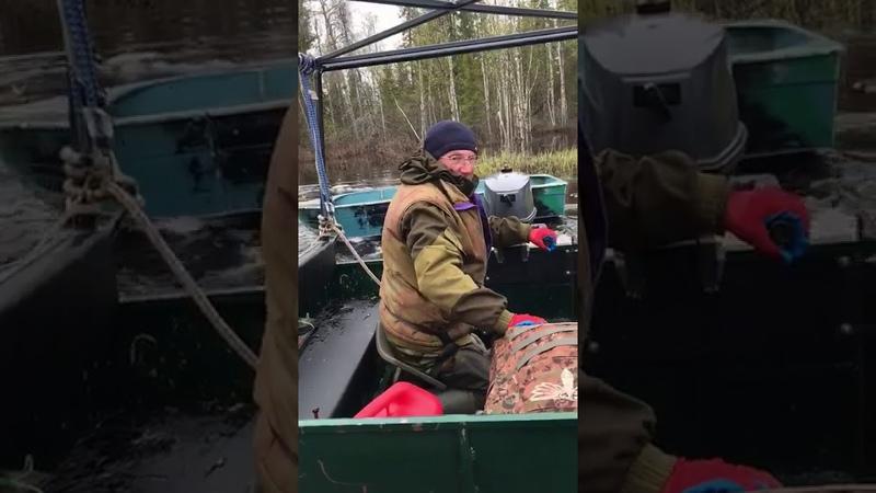 Вездеход Добрыня Транспортер 30 л с