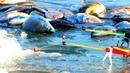 ВЕСНА ИДЁТ, ЛЁД ТАЕТ - РЫБА БЕШЕНО КЛЮЁТ. Зимняя рыбалка по последнему льду.
