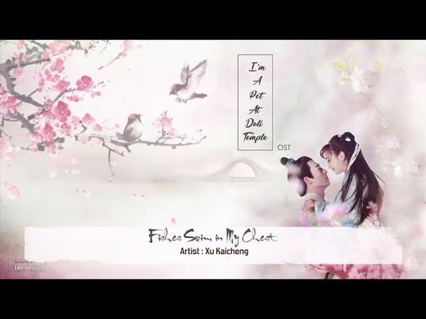 [ ENG SubPinyin ] OST | Fishes Swim In My Chest 怀里的鱼 - Xu Kaicheng 徐开骋 | Im A Pet At Dali Temple